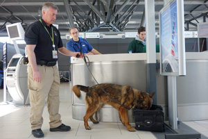 Canine unit member and Airport Police checking out a bag.