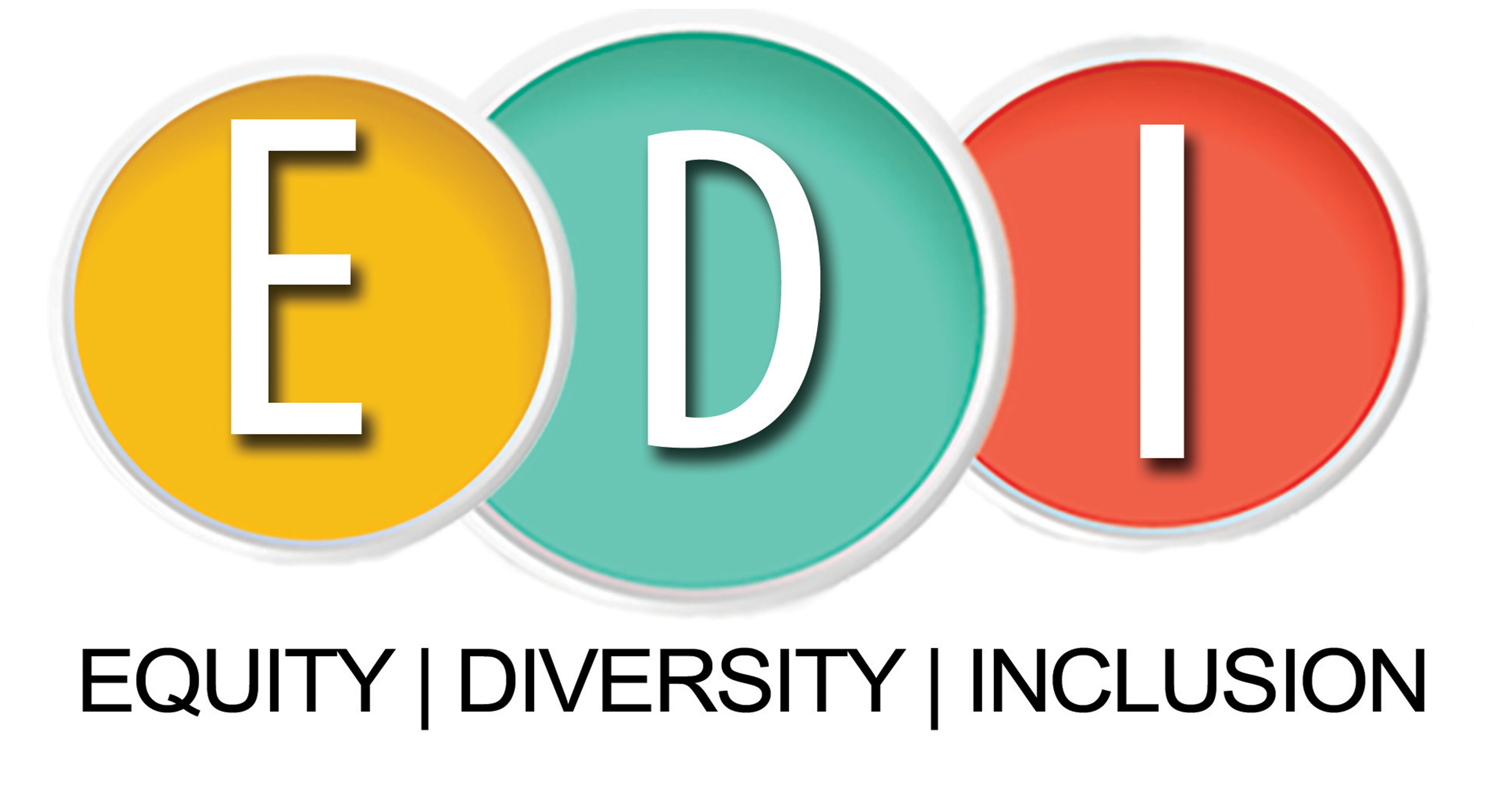 Equity Diversity and Inclusion Section
