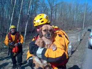 Ottawa Fire Service's Water Rescue Crew member holding a wet dog, rescued from the river.